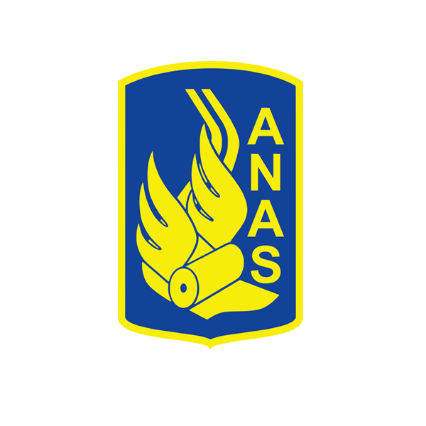 7_31_zoomed_anas